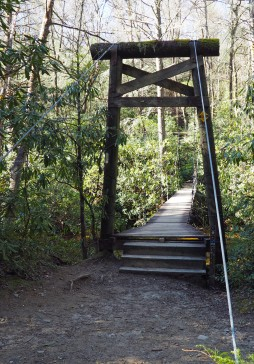 The suspension bridge over Mills River